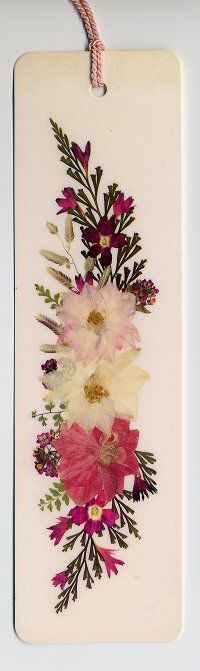 pressed flowers #3