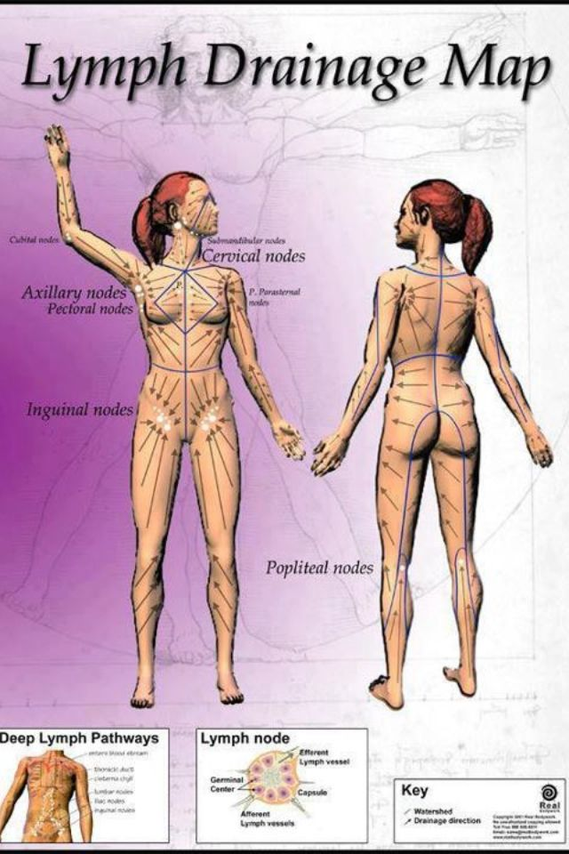 Health, lymph drainage map, go get a massage or jump on a trampoline this will help your body detox through your lymphatic system