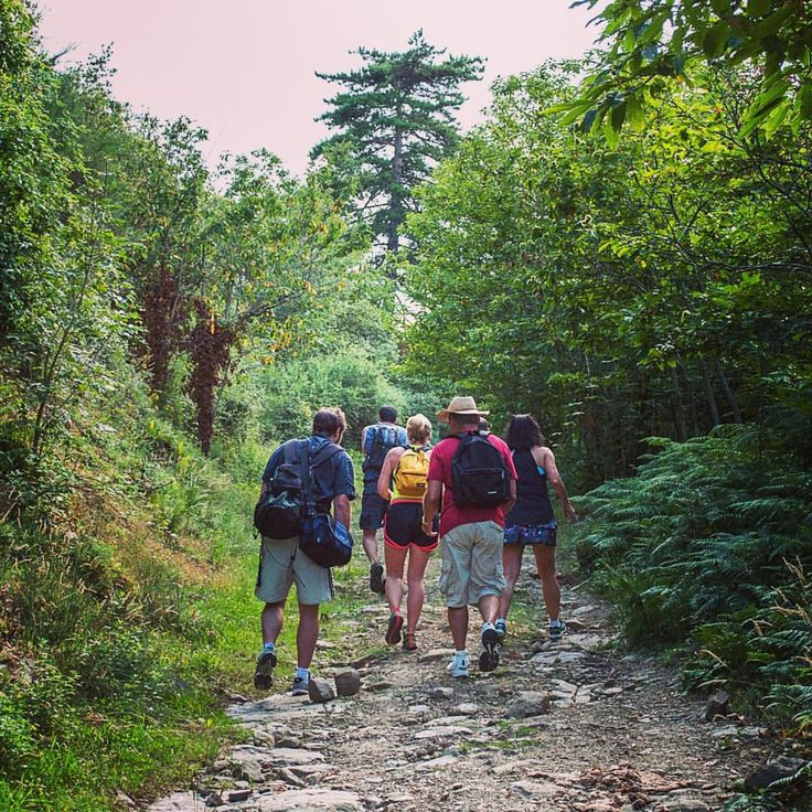 What do you need for a perfect Hike? You need an unexplored forest and a good company to talk with #tuscanfitness #picoftheday #hiking #hiketuscany #summer #tuscany #friends