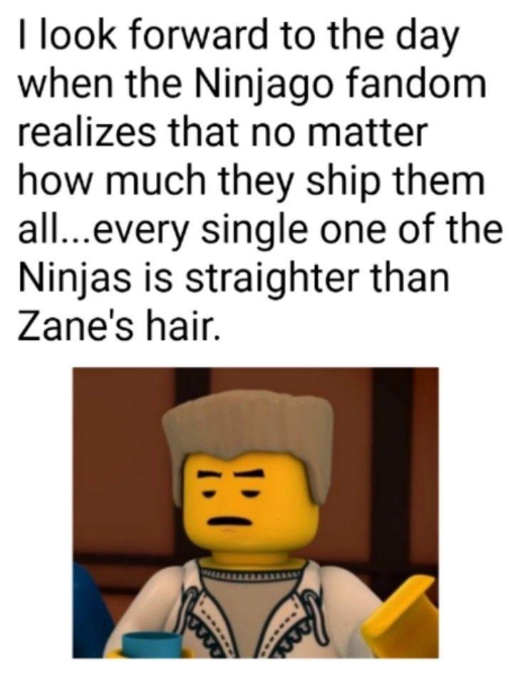 Please People Ninjago Memes Ninjago Lego Ninjago