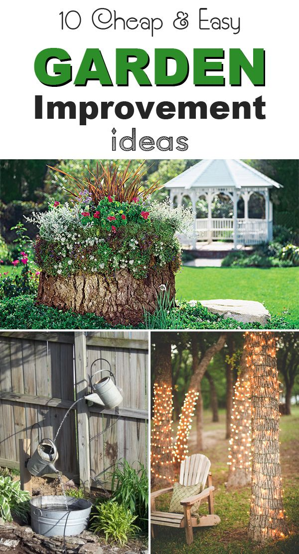 Here are 10 ways to improve the look of your garden on a budget!