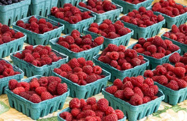 УЗНАЛ САМ  -  РАССКАЖИ ДРУГОМУ!: То, что нужно знать о заморозке ягод на зиму: поле...