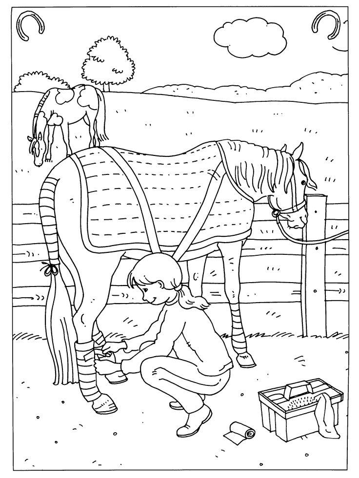 Kleurplaten Van Paarden En Pony 39 Kleurplaten Paradijs Paarden Google Zoeken Kleur