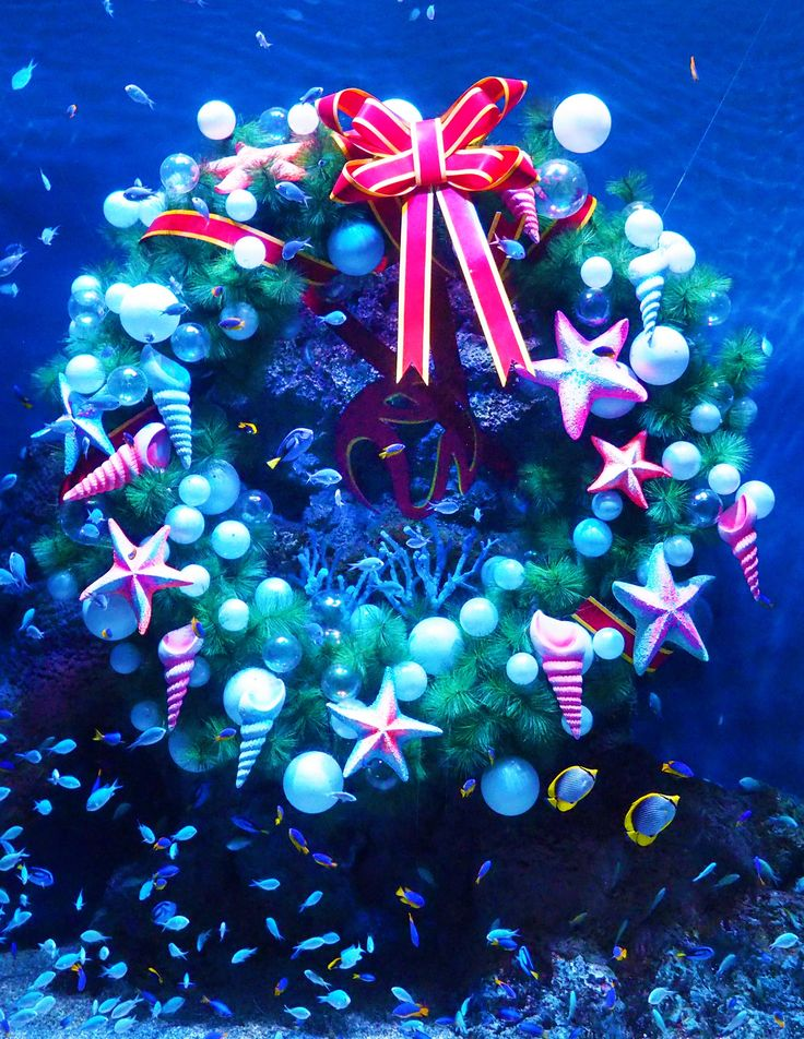 We're celebrating Christmas underwater this year at our S.E.A. Aquarium. Look at all those fishes swimming around the Merry Fishmas Wreath!