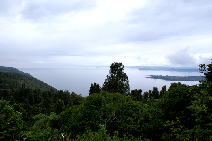 The Road from Lake Taupo