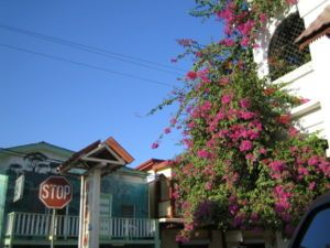 San Ignacio Belize | San Ignacio (Belize)