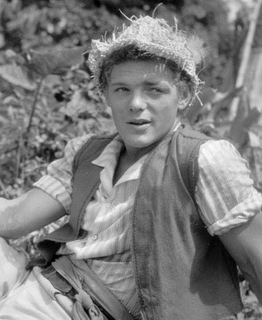 James MacArthur: The Swiss Family Robinson (1960)