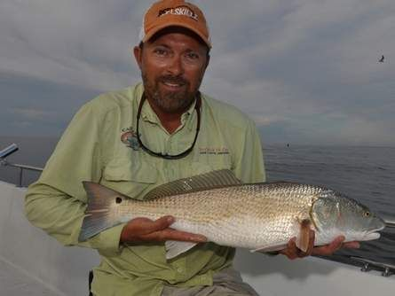 17 best images about reel skillz tips videos on pinterest for Red drum fishing rigs