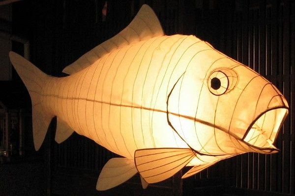 141 best things you can think images on pinterest pisces for Paper lantern fish