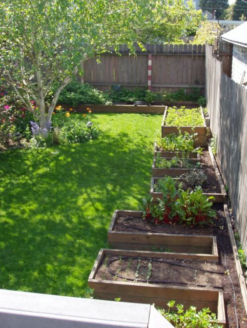 25 best ideas about backyard vegetable gardens on for Vegetable patch design ideas