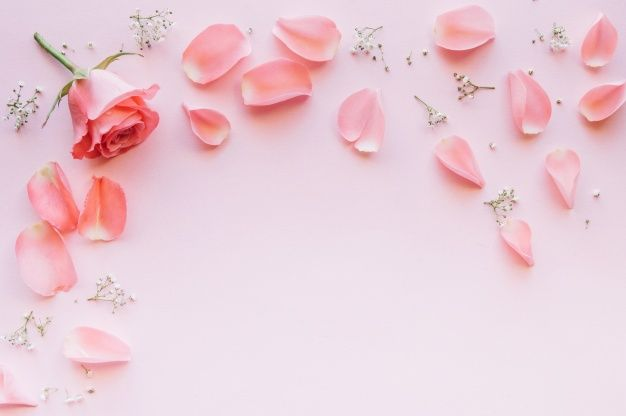 More Than 3 Millions Free Vectors Psd Photos And Free Icons Exclusive Freebies And All Graphic Resources That You Pink Background Pink Roses Pink Aesthetic