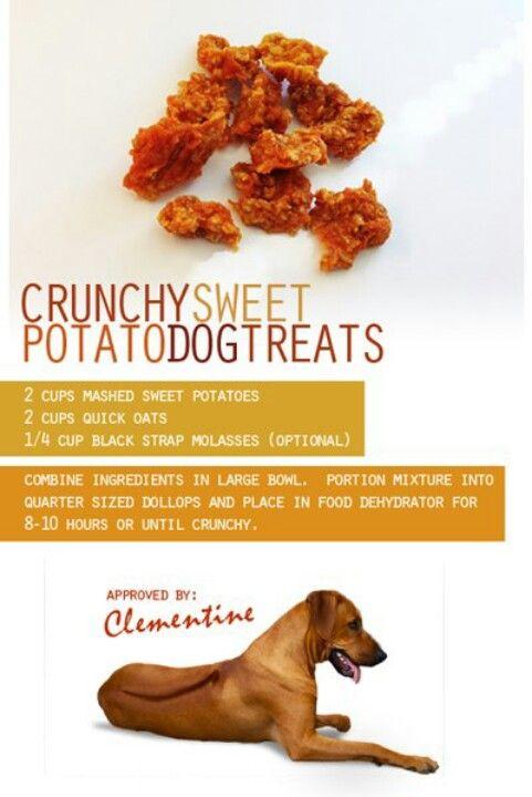 Crunchy Sweet Potato Dog Treats