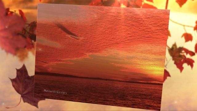 Sunset at Amity Stradbroke Island, and the Moonrise behind the trees ........Photos by Marguerite Carstairs........sunrisetoday.wordpress.com