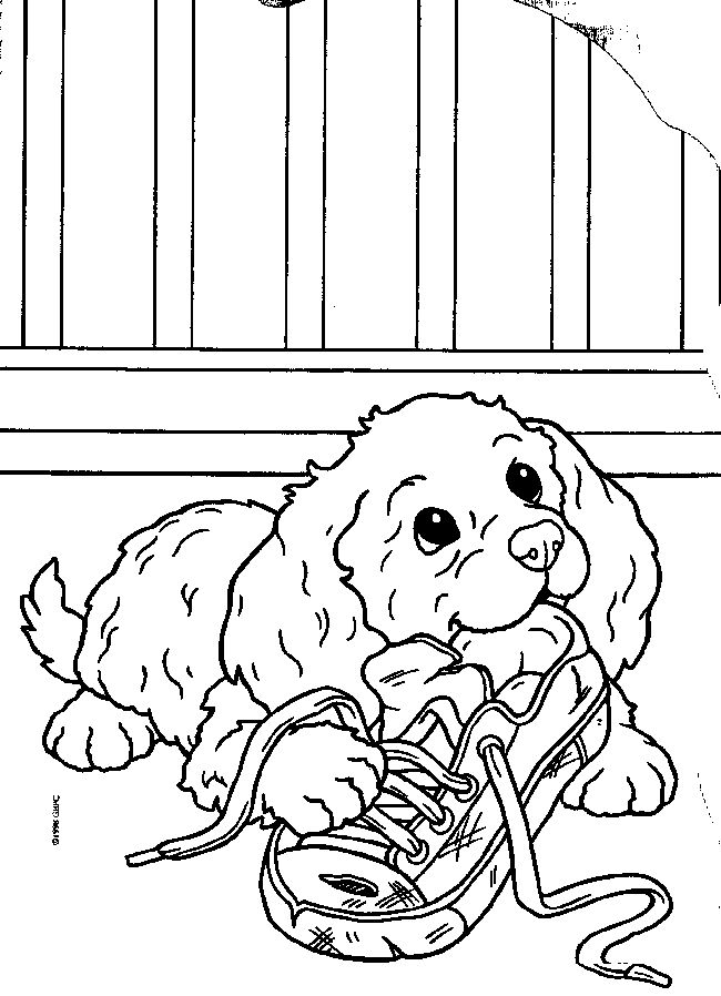 Coloring Pages Of Puppys