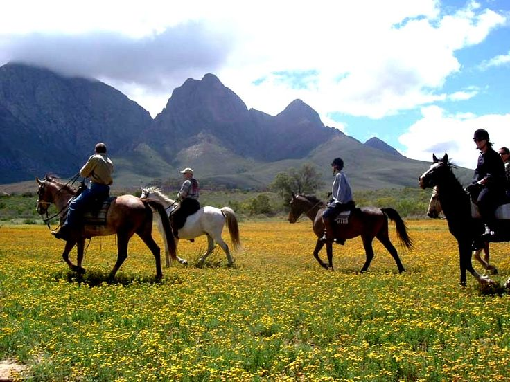 Horseback riding is a great way to see indigenous nature in the Breede River Valley while staying at Christian Retreat. http://acomsa.co.za/worcester/fairy-glen-game-reserve/