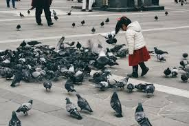 children playing with doves - Google Search