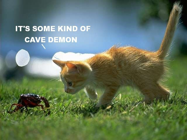 Of course it's a cave demon. | Baby animals pictures ...