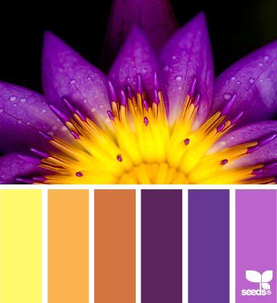 flowered palette