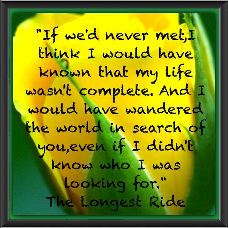 Nicholas Sparks The Longest Ride. Great author great book ...