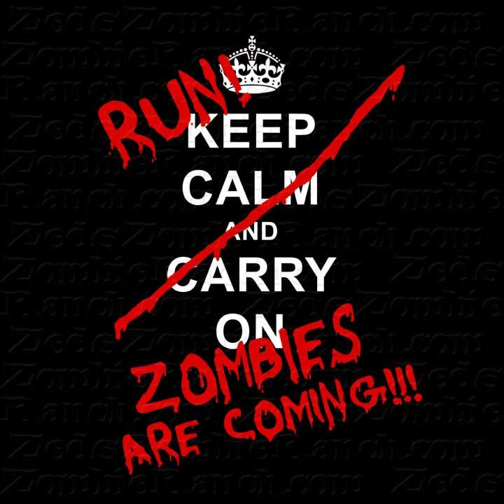 Zombie Shirt Keep Calm Carry On Run Zombies by zedszombieranch