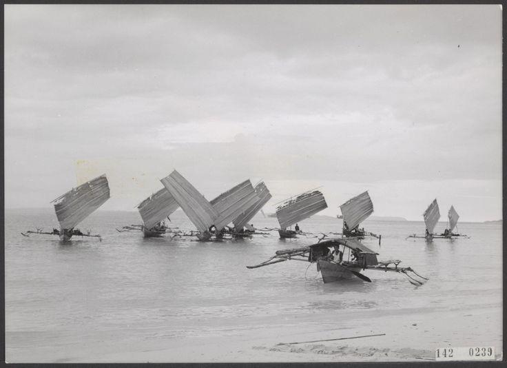 Een vloot prauwen (Nieuw-Guinea oktober 1960)