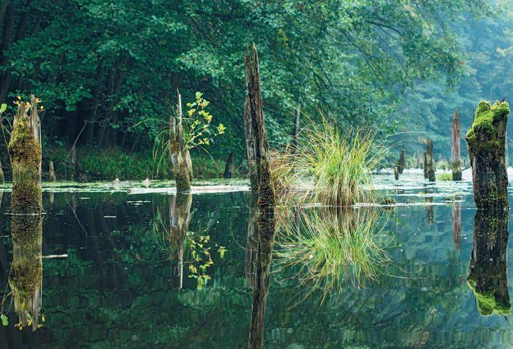 A magyar Gyilkos-tó