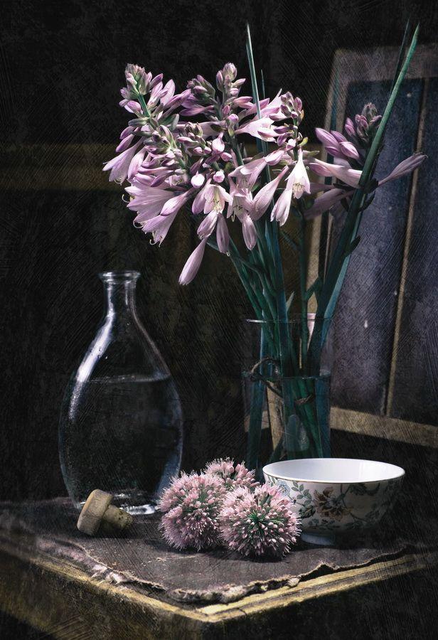 фотографии цветов натюрморты под старину даша пришла домой