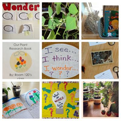 Learning to Create a Landscape of Wonder - inquiry learning and online book study of: In A Place for Wonder (Heard & McDonough, 2009).