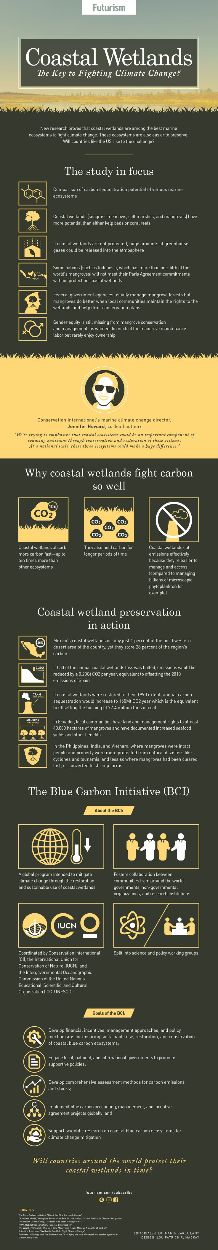 Coastal Wetlands New research proves that coastal wetlands are among the best marine ecosystems to fight climate change. Will countries like the US rise to the challenge to preserve and restore coastal wetlands?