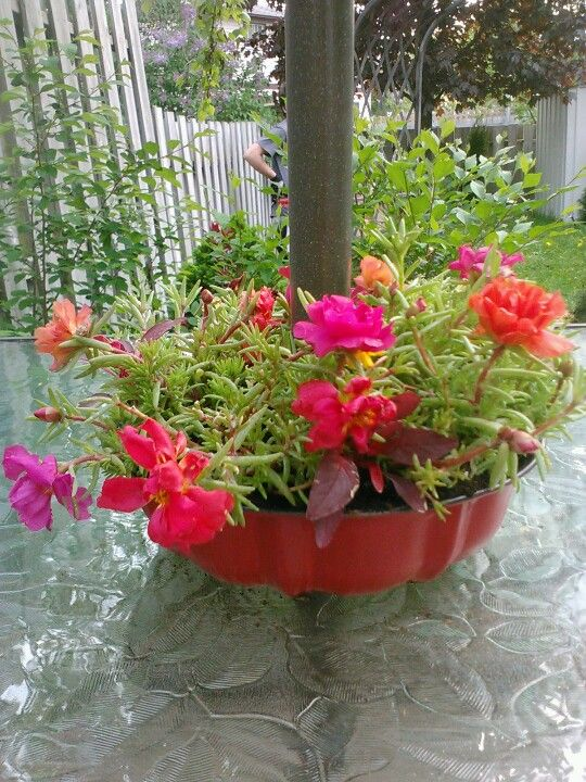 Thanks Pinterest! I made this little flower container to go around patio table umbrella using a bundt cake pan from the dollar store. Turned out kinda cute :-)