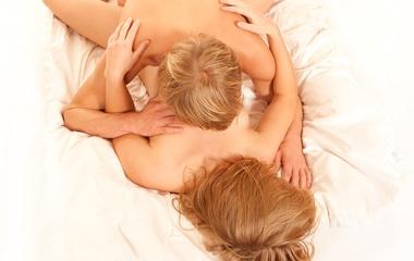 Sexo - Los lazos que crea el sexo, Artículo
