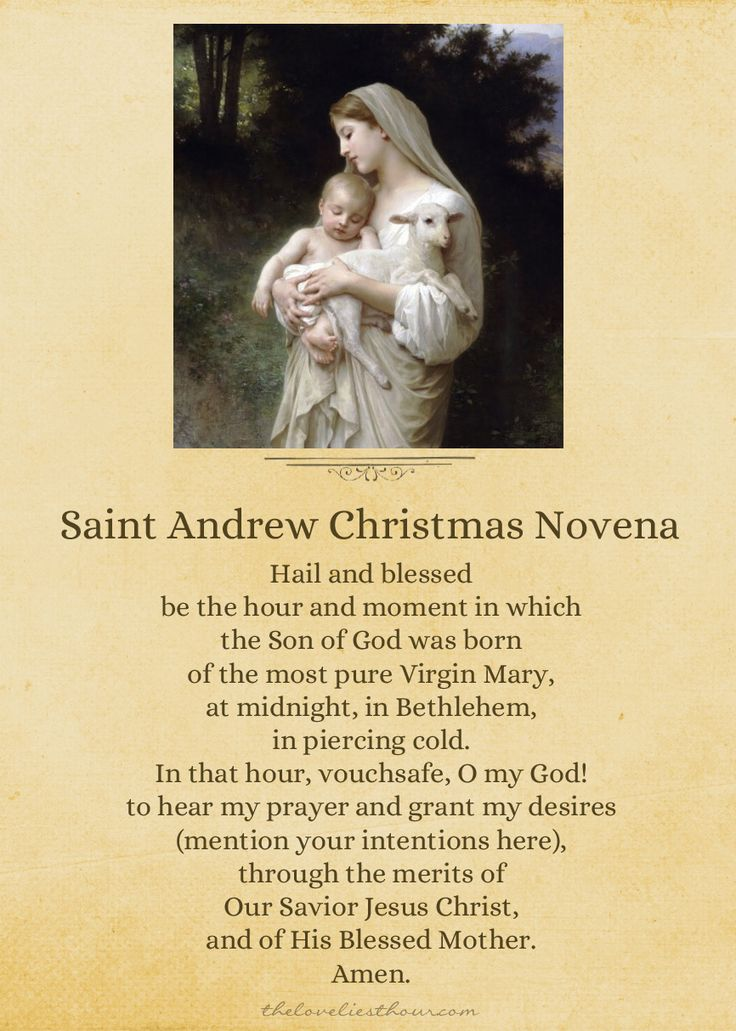 http://www.theloveliesthour.com/2012/11/30/st-andrew-christmas-novena-printable/