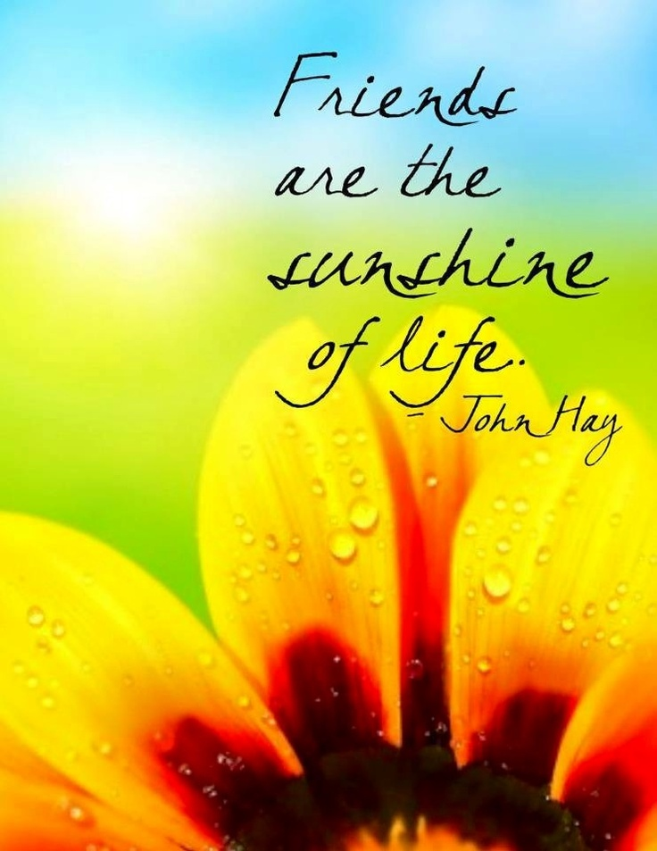 """Friends are the sunshine of life"" quote via Carol's Country Sunshine on Facebook"