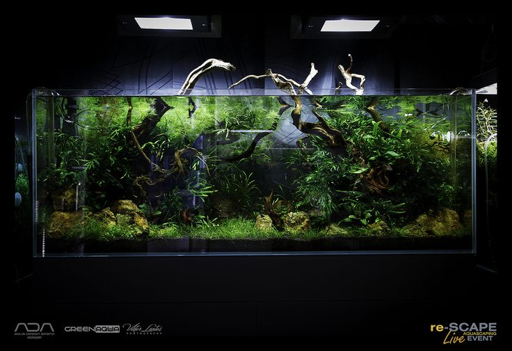 Ikea Grundtal Countertop Lighting ~   Aquarium Ideas on Pinterest  Cool light fixtures, Ikea expedit and