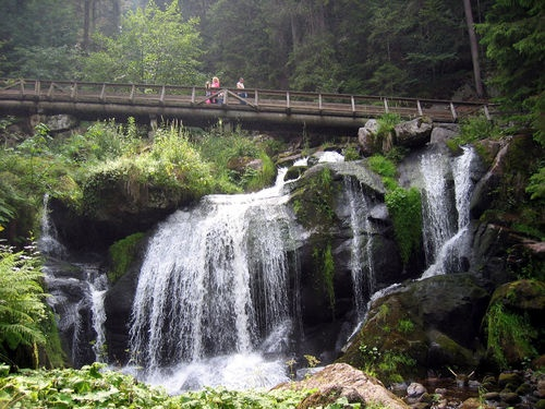 The Black Forest Germany Beautiful Places Pinterest Beautiful Walking Tour And