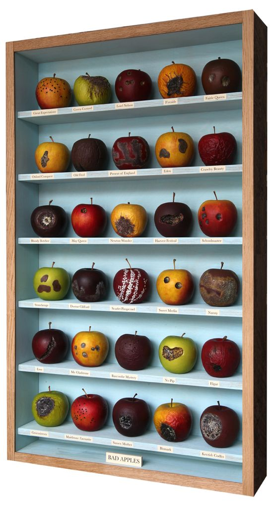 Bad Apples  Box by John Dilnot  www.johndilnot.com