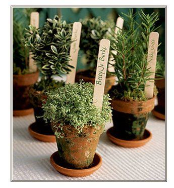 Thinking about something similar for a small corporate garden luncheon...  http://charmingweddings.blogspot.com/