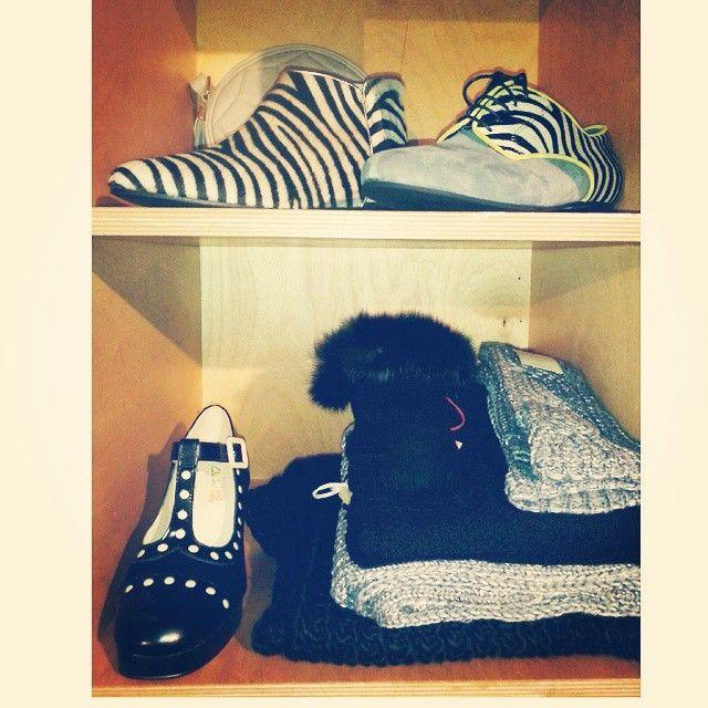 #hegosshoes #hegos #zebraprint #orlakiely #orladotty #orlakielyforclarks #dentsscarf #dents_leather gloves