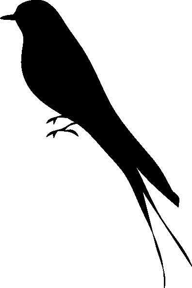 Best 25+ Bird silhouette tattoos ideas on Pinterest | Free ...