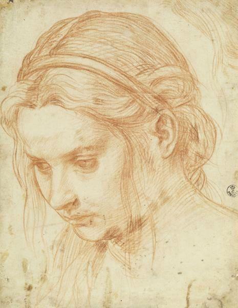 Andrea del Sarto - studio del capo di una donna giovane - ca. 1523 -  Galleria degli Uffizi, Gabinetto Disegni e Stampe, Florence