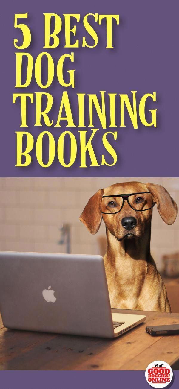 Ideas Information And Tips For Dog Training Tips Take Your Pet Dog For Normal Vet Often Puppies Best Dog Training Books Dog Training Books Best Dog Training