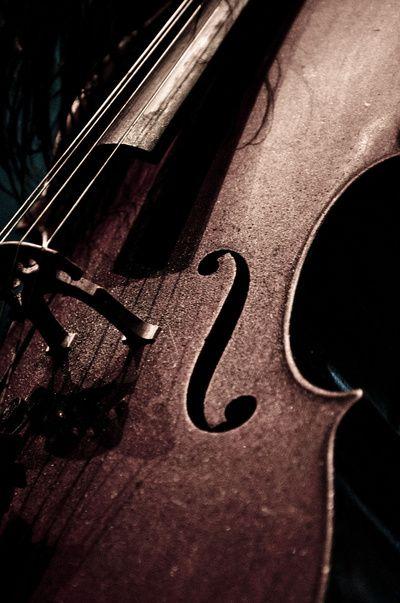 Cello by Sergio Bastidas