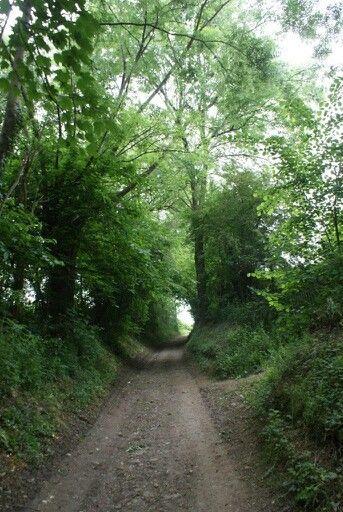 Groene wissel Houthem St.Gerlach 15km. Holleweg.
