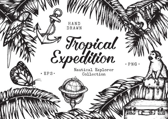 Tropical Expedition Collection by Marie Ockleford on @creativemarket