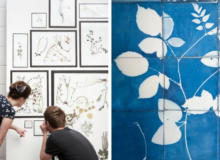 71 best cyanotype ideas images on pinterest sun prints graphics design sleuth botanical moments captured in a blueprint malvernweather Choice Image