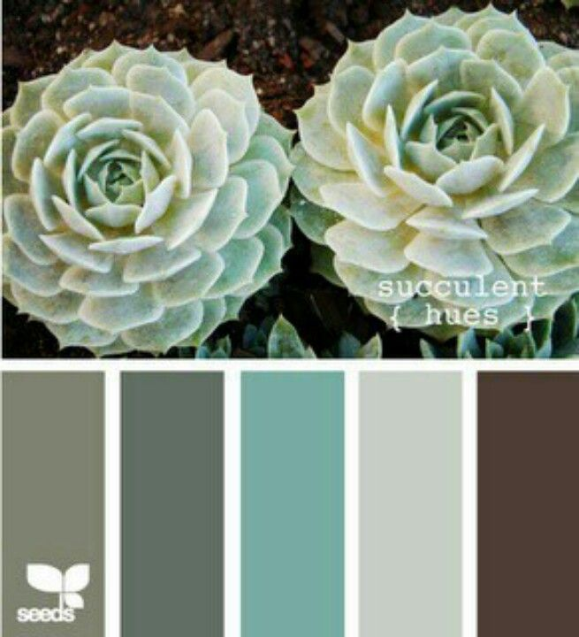 Green, Gray, Brown Color Palettes