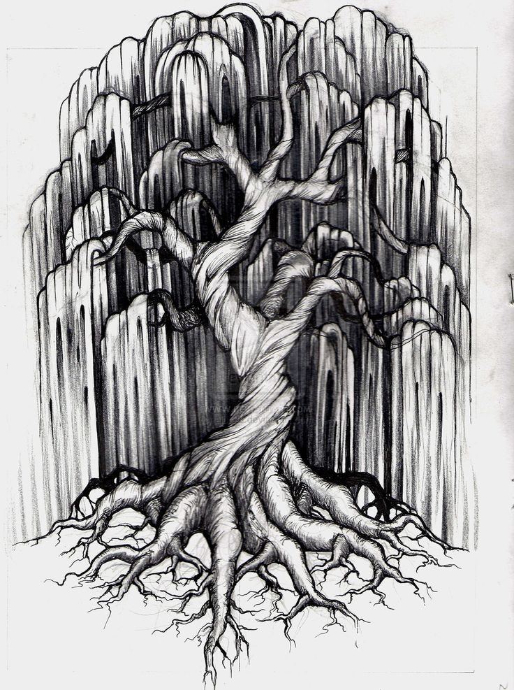 Willow Tree Tattoo by ~aluc23 on deviantART