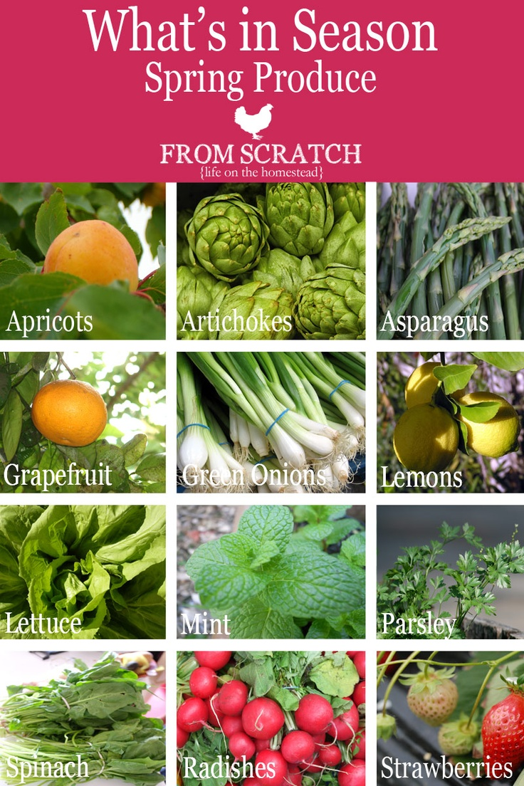 1000 Images About Spring Summer Produce On Pinterest 400 x 300