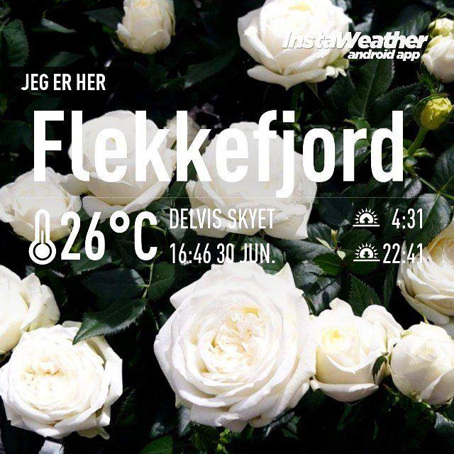 Nydelig dag! Vi planter i krukker og bed og nyter varmen  #sommer #varmt #hagestell #roser #blomster