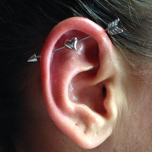 Best 25+ Bar ear piercing ideas on Pinterest | Ear ...
